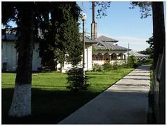 Mânăstirea Țigănești