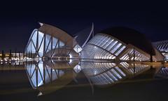 LifeForce - EXPLORED! Thank You :-) (Fotomondeo) Tags: españa valencia architecture night reflections lights luces noche spain arquitectura nikon reflejos ciudaddelasartesylasciencias sigma1020mm cityofartsandsciences museodelascienciaspríncipefelipe calatreva nikond7000 elhemisfèric