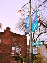 . (Stephanie DiCarlo) Tags: autumn chicago fall college university streetlamp depaul depauluniversity