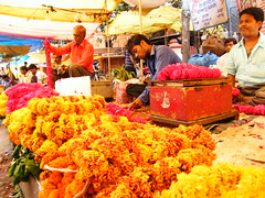 Flower wallas in Jaipur, Rajasthan