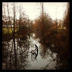 Messy Reflections #yvr #stanleypark #december (trishp97) Tags: reflections square squareformat stanleypark hefe lostlagoon iphoneography instagramapp