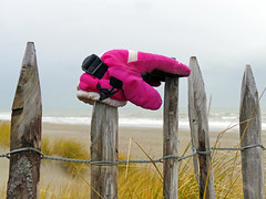 A pure hand needs no glove  to cover it. (Dikke Biggie.) Tags: pink beach monster rose closeup strand fence dunes samsung glove fencing fenced duinen hek vrijdag hekwerk hff handschoen samsunggalaxy dgawc fencedfriday happyfencedfriday samsungekgc110
