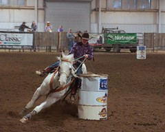 Bar None Jr Rodeo (Garagewerks) Tags: horse girl sport female youth bar turn cowboy all none sony barrel sigma indoor jr racing arena burn rodeo cans cowgirl athlete f28 equine 2875mm views100 views200 slta65v
