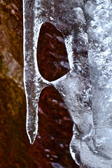 long-nosed face (heatherybee) Tags: winter ice nature rock january rockface icicle icy naturalicesculpture januarythaw naturaliceformation sonyrx100ll