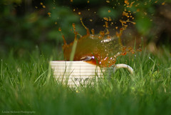 Spring time coffee splash (LouiseMelanie) Tags: uk green coffee grass spring mug splash coffeesplash