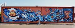 MR WANY + SOFLES (a world seen through open eyes) Tags: streetart graffiti artist graf urbanart qld piece toowoomba firstcoat gtm sofles mrwany awstoe