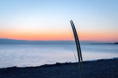 Good Morning - 1 (AncasterZ) Tags: sunset wild lake ontario canada beach glass sunrise bokeh sony hamilton alpha f28 dt slt a57 sal1650 flickrandroidapp:filter=none