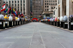 All your eggs in one busket (RomanK Photography) Tags: street nyc newyorkcity streets streetphotography eggs streettogs