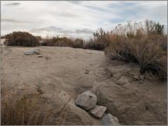desert sand (tesseract33) Tags: world california travel light colour art nature nikon desert nikondigital palmdesert nikond300 tesseract33 peterlangphotography