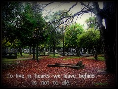 To Live In Hearts (sirwiseowl) Tags: autumn cemetery words wisdom masterton leaes