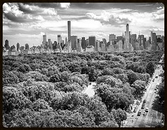 Metropolis Jungle June 19 2015 (dannydalypix) Tags: newyorkcity june square centralpark manhattan jungle squareformat metropolis gotham 19 centralparkwest centralparknyc 2015 flickrapp iphoneography instagramapp