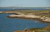 Breakwater (Vee living life to the full) Tags: uk england wales port garden flora gate harbour may holyhead 2015 isleofanglesey nikond300 shootaboot shootaboot2 plascadmant