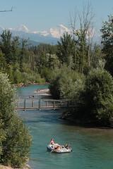 Eiger - Mönch - Jungfrau in den Alpen - Alps mi Gummiboot - Schlauchboot auf der Aare ( Fluss - River ) zwischen der S.chützenfahrbrügg bei M.ünsingen und dem C.ampagna bei der H.unzigebrügg im Kanton Bern der Schweiz (chrchr_75) Tags: chriguhurnibluemailch christoph hurni schweiz suisse switzerland svizzera suissa swiss chrchr chrchr75 chrigu chriguhurni juli 2015 juli2015 albumzzz201507juli kantonbern hurni150710 albumaare albumaarethunbern aare fluss river schlauchboot gummiboot böötle gummiboote schlauchboote boot jolle dinghy boat jolla canot ディンギー sloep bote albumschlauchbootegummibooteunterwegsinderschweiz mönch kantonwallis kantonvalais berg mountain montagne alpen alps albumjungfrau jungfrau viertausender montagna berner oberland albumdreigestirneigermönchjungfrau dreigestirn eiger bergeiger albumeiger