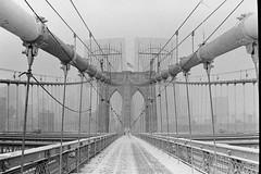 Brooklyn Bridge (slightheadache) Tags: nyc newyorkcity winter newyork film brooklyn pentax january grainy neopan1600