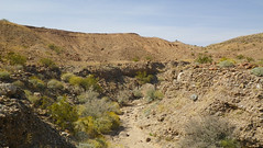 IMGP1842.jpg (DrPKHouse) Tags: arizona unitedstates loco bullheadcity bullhead