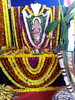 IMG_20161211_151116 (bhagwathi hariharan) Tags: rangoli kolam nallasopara nalasopara rose pooja christmas 2016 festivals mumbai goregaon prithvilandproject 2017 celebrations lordshani lordayyappa