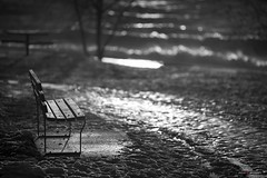 Dark Bench (Clayton Perry Photoworks) Tags: vancouver bc canada winter snow explorebc explorecanada seat bench blackwhite bw