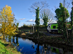 Autumn Along the Royal Canal