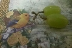 A bird in the hand (Oh.Great!) Tags: wah grapes