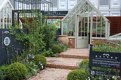 National Trust greenhouse collection at RHSChelsea. Scotney in woodsage (Alitex UK) Tags: collection greenhouse trust natioanl alitex alitexgreenhouses