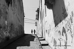 (Lucille Kanzawa) Tags: bw pb sombras pernambuco olinda grafismo pichações
