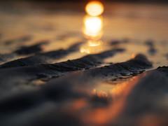 Sand Ripples (Amble180) Tags: wild panasonic northumberland about g3 hauxley minoltarokkor50mmf17