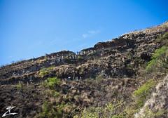 Up the Trail (MjZ Photography) Tags: ocean beach hawaii honeymoon waikiki oahu walk crowd tourist hike tourists trail diamondhead honolulu diamondheadcrater diamondheadstatemonument