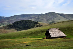 DSC_2822 (macanoti) Tags: house mountain nature nikon zlatibor d3100