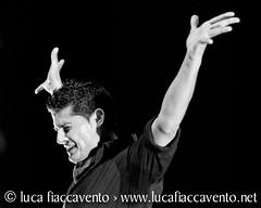 Rafael Campallo en escenario (Manul Betanzos) Tags: de manuel flamenco baile sevilla flamenco escuela clases flamenco academia betanzos sevillanas sevillanas triana espaa