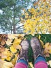 {96/365} harsh winds (lavishlylush) Tags: autumn red sky cold fall leaves yellow cool boots wind gray falling breeze apieceofme outdoorphotography