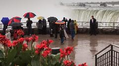 Odd Man Out (Bert CR) Tags: wet strange rain umbrella niagarafalls waterfall crowd niagara outofplace 2470l oblivious heavyrain oddmanout manonaphone