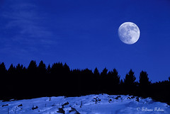 Notte magica (silvano fabris) Tags: moon nature night luna notte