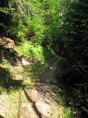 Orsieres - Martigny (12.07.13) 19 (rouilleralain) Tags: valais sembrancher valdentremont stbernardexpress orsires viafrancigena