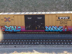 Zeal Donde STS (monolithic landmarks) Tags: graffiti boxcar graff tagging freight ttx