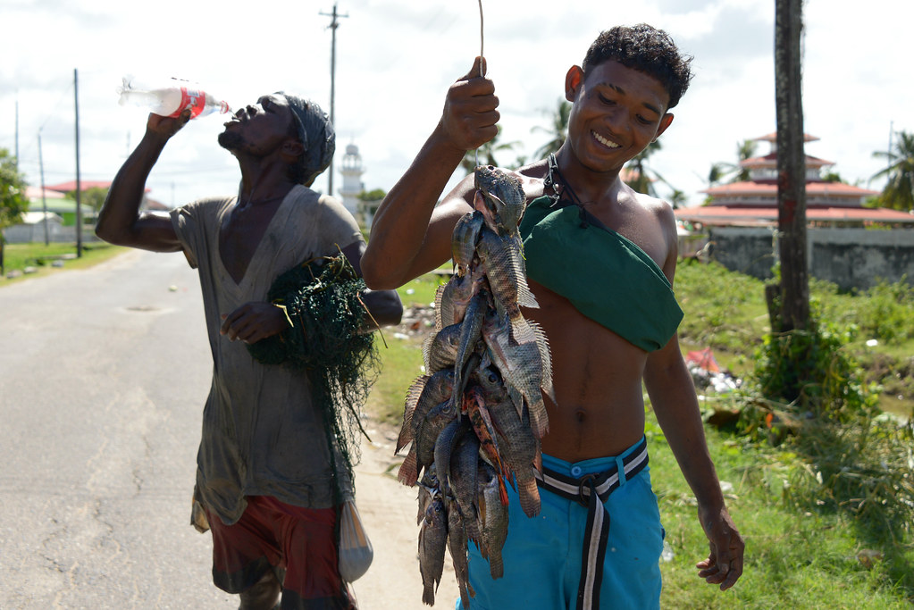 Image result for image of boys catching a fish in Guyana from a trench