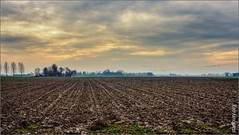Winsum soil, winter (FlickrDelusions) Tags: winter netherlands landscape mud soil clay nl groningen winsum