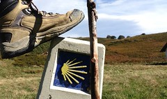 "Guías Acompañantes Camino de Santigo Navarra 12 <a style=""margin-left:10px; font-size:0.8em;"" href=""http://www.flickr.com/photos/116167095@N07/12267575785/"" target=""_blank"">@flickr</a>"