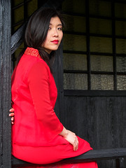 365-338 The Lady In Red (kckelleher11) Tags: ireland red woman girl gardens lady japanese photo model shoot olympus omd kildare 2014 in em5 skpc
