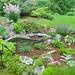 A Renovated Garden