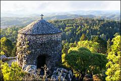 Mata do Buçaco, Portugal. (gilxxl) Tags: portugal arquitetura sony natureza floresta buçaco dslra100 matadobuçaco mygearandme mygearandmepremium mygearandmebronze mygearandmesilver mygearandmegold gilbertooliveira gilxxl