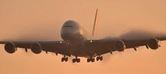 [07:19] QF0001 SYD-DXB-LHR (A380spotter) Tags: shockwave condensation moisture water vapour vortex trail approach landing arrival finals airbus a380 800 msn0074 vhoql phyllisarnott qantasairways spiritofaustralia qfa qf qf0001 الإمارات emiratesairline uae ek ek5101 syddxblhr runway27r 27r london heathrow egll lhr