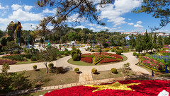 Dalat Flower Gardens (Dmitri Naumov) Tags: park city summer plant flower tree floral beauty garden landscape botanical town spring flora asia view natural blossom gardening outdoor decoration sunny vietnam flowerbed botany ornamental dalat touristattractions perennial blooming recreational landscaped traveldestinations