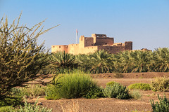 Jabrin fort, Oman (Frans.Sellies) Tags: day fort clear oman     jabrin  jibrin  umman     20140201img19282 gabrain