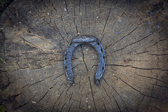 The very aged (Khuroshvili Ilya) Tags: wood old metal shoe pattern russia outdoor horseshoe artefact istra senter