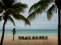 Life's a Beach II (Steve Vallis) Tags: ocean sea beach palms mexico sand