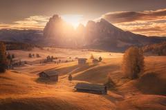 Golden Valley (albert dros) Tags: sunburst autumn houses sunrise alpedisiusi goldenlight albertdros mountains italy trees dolomites travel golden sunlight peaks tourism sunset