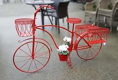 Dig This (Bill 1.6 Million views) Tags: bike bicycle flowers flowerpot wicker wickerfurniture broadmead broadmeadvillage shopping shoppingmall
