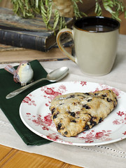 (Keri Winter) Tags: life morning food sunlight bird coffee breakfast still books blueberry scone