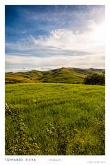 Verso Siena (Luca Cesari) Tags: italy panorama green grass landscape nikon italia country campagna tuscany siena 24mm nikkor toscana d800