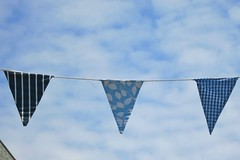 Blue Bunting (gary8345) Tags: kent whitstable 2013